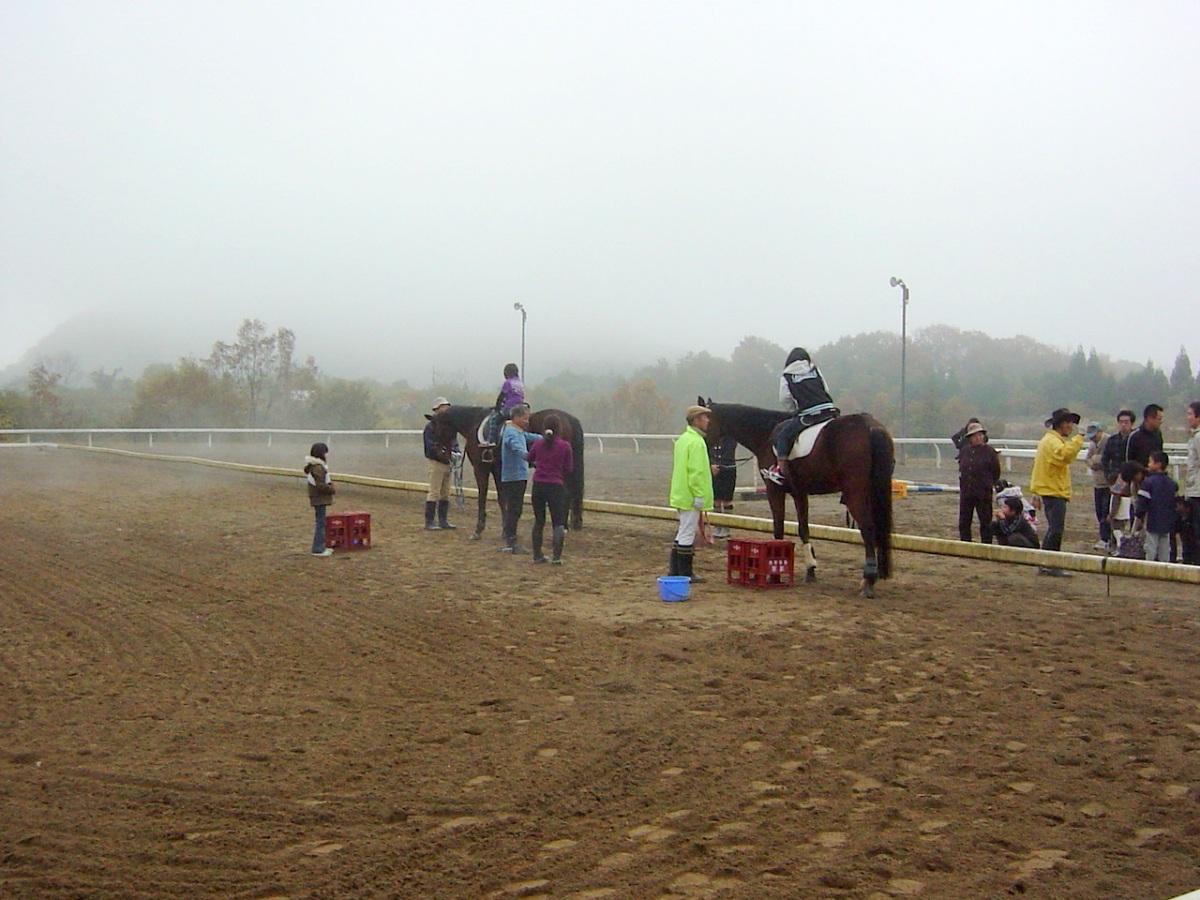2010年乗馬体験会