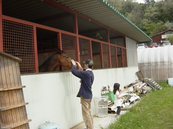 こんにちは、お休みの馬にあいさつの親子