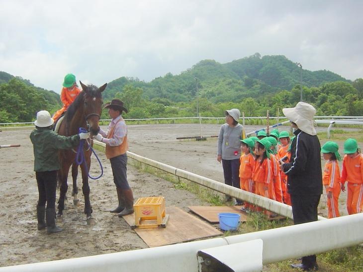馬の乗り方の説明を受ける