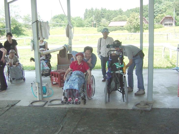 車椅子からバックミラーで馬に焦点「見えた!