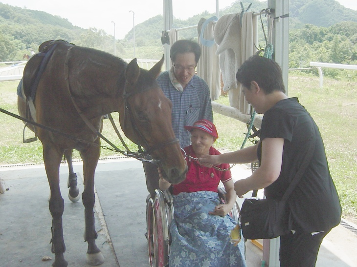 目の前に大きな馬に感激