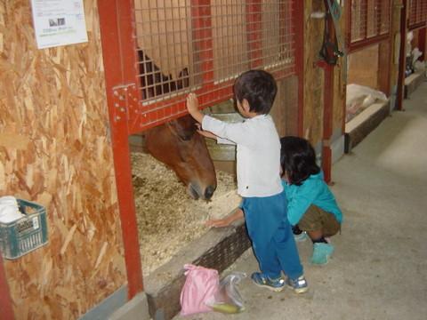 乗馬後は出番のない馬と親しく会話