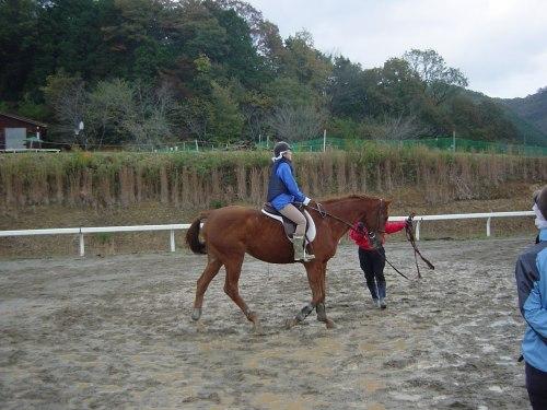 2頭の馬で分かれて騎乗