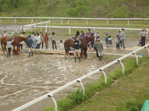 2頭の馬で騎乗と下馬のようす