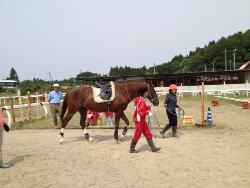 引き綱により馬の準備体操