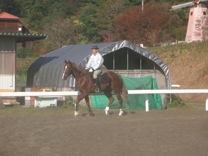 乗馬教室2014秋 第二日目 001
