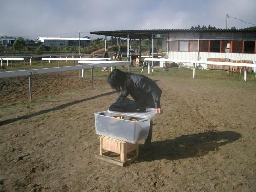 乗馬教室2014秋 第二日目 003