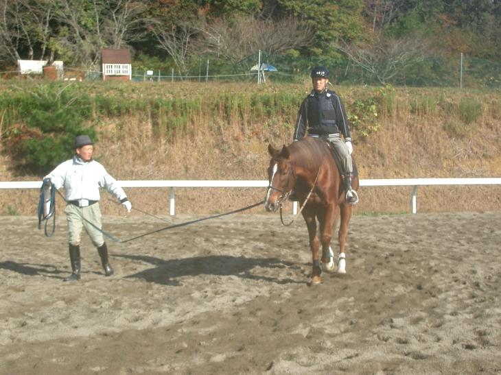 乗馬教室2014秋 第二日目 041