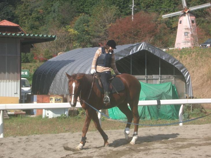 乗馬教室2014秋 第二日目 063